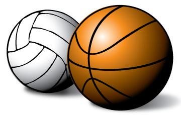 Image result for basketball volleyball